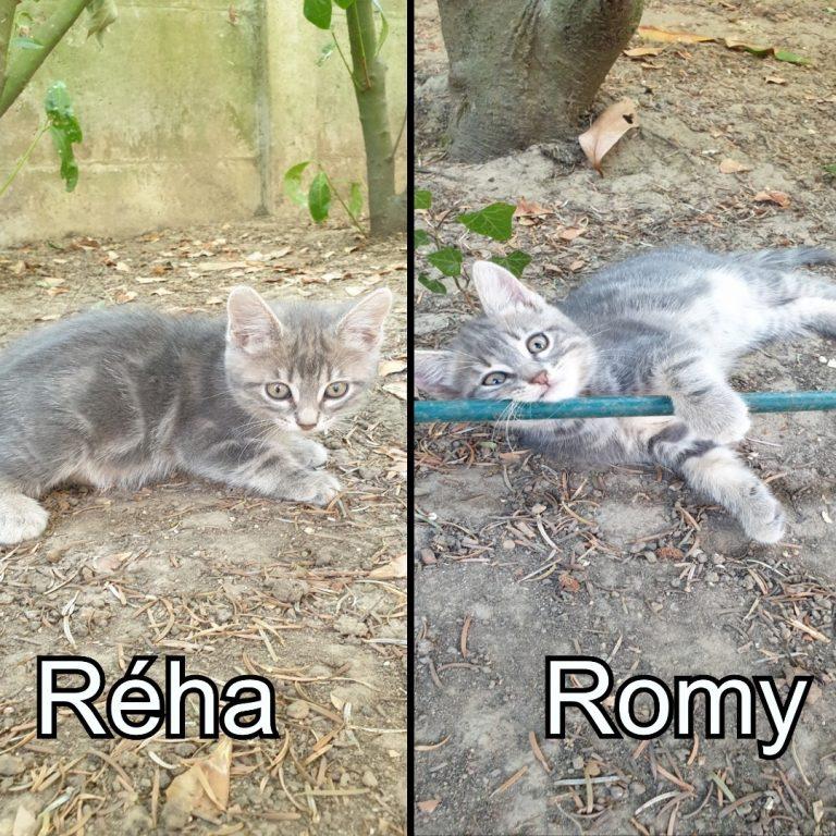 Réha et Romy